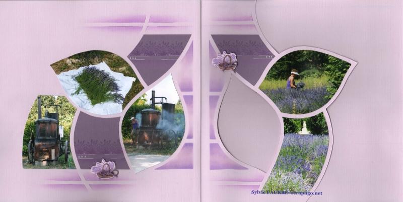 parfums du sud (3) (800x401)